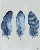 Indigo Blue Feathers I Fine-Art Print