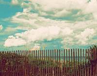 Beyond The Fence Fine-Art Print