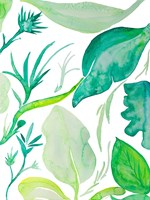 Green Water Leaves II Fine-Art Print
