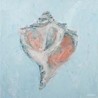 Conch & Scallop I Fine-Art Print
