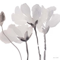 Gray Tonal Magnolias II Fine-Art Print