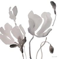 Gray Tonal Magnolias III Fine-Art Print