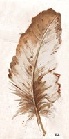 Brown Watercolor Feather II Fine-Art Print