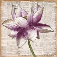 Defined Lotus I Fine-Art Print