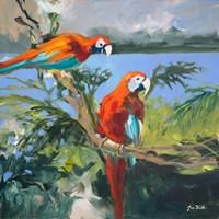 Parrots at Bay II Fine-Art Print