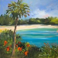 Palm Isle Fine-Art Print