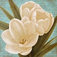 Blue Morning Tulips I Fine-Art Print