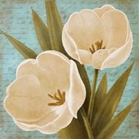Blue Morning Tulips II Fine-Art Print