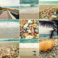 Shell Beach (9 Patch) Fine-Art Print