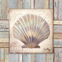 Beach Shell I Fine-Art Print