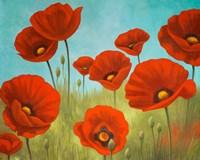 Field of Poppies II Fine-Art Print