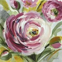 Ranunculus Rosa I Fine-Art Print