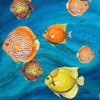 Aquatic Sea Life II Fine-Art Print
