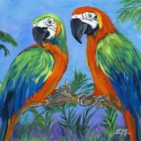 Island Birds Square I Fine-Art Print
