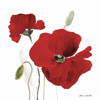 All Red Poppies I Fine-Art Print