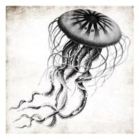 Jellyfish Ink Fine-Art Print