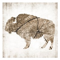 Buffalo Rings Fine-Art Print
