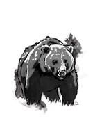 Black Bear Fine-Art Print