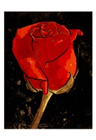 Golden Rose Fine-Art Print