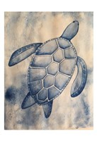 Blue Sea Turtle Fine-Art Print