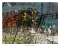 Mountain Wildflowers I Fine-Art Print