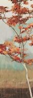 Maple Tree I Fine-Art Print