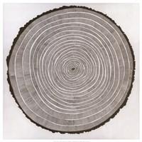 Tree Theory Fine-Art Print
