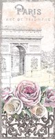 Paris Roses Panel VII Fine-Art Print