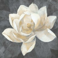 Majestic Magnolia Neutral Sq Fine-Art Print