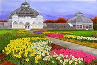 Botanical Gardens, Buffalo, NY Fine-Art Print
