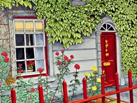Ireland - Red Fence, Adare Co Limerick Fine-Art Print