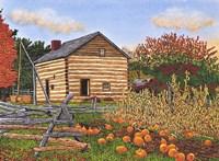 Pumpkin Patch At Mumford Ny Fine-Art Print