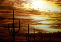 Cactus Sunset Fine-Art Print