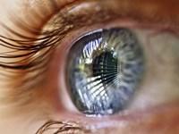 Eye Window Reflection Fine-Art Print