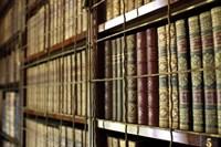 Library Bookcases Fine-Art Print
