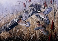 Corner Post Covey - Bobwhite Fine-Art Print