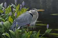 Biding Time Great Blue Heron Fine-Art Print