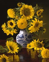 Sunflowers in Blue & White Chinese Vase Fine-Art Print