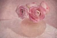 Pink Ranunculus Bouquet Fine-Art Print