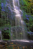 Majestic Waterfall Fine-Art Print