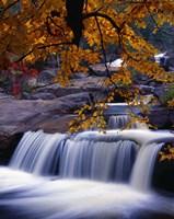 Waterfall Over the Rocks in Fall Fine-Art Print