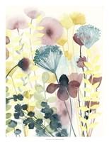 Garden Lace II Fine-Art Print