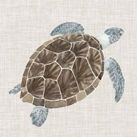 Sea Turtle I Fine-Art Print