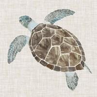 Sea Turtle II Fine-Art Print