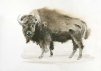 Buffalo Bill Fine-Art Print