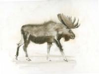 Dark Moose Fine-Art Print