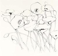 Black Line Poppies I Fine-Art Print