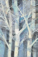 Winter Birches I Fine-Art Print