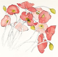Black Line Poppies II Watercolor Fine-Art Print