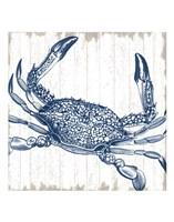 Seaside Crab Fine-Art Print